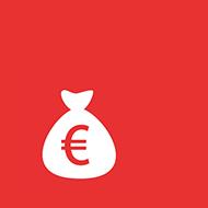 AG Steuer- und Vermögensdaten